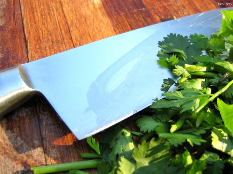 Cutelaria – uma conversa sobre facas